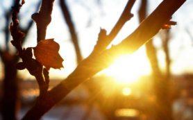 В Смоленской области ожидается резкое потепление
