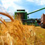 Квалифицированные кадры – смоленскому агропрому