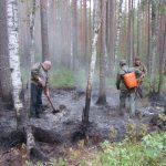 В Смоленской области тушили лесной пожар