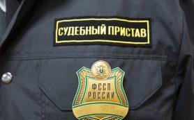 Возвращение на родину: 12 нелегалов выдворили из Смоленской области