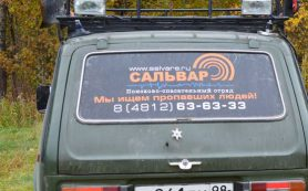 Пропавшая в рославльском лесу пенсионерка нашлась