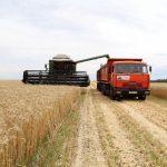 «Урожай без сюрпризов». В Смоленской области стартовала уборочная страда