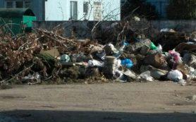 На улице Строителей в Вязьме образовалась стихийная свалка