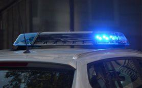Подозреваемый в краже с пилорамы задержан в Смоленском районе