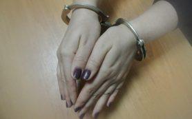 Жительница Руднянского района неудачно имитировала кражу