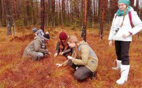 Московские школьники провели каникулы в «Смоленском Поозерье»