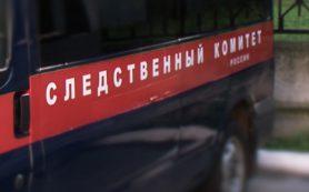 Житель Гагарина задержан по подозрению в убийстве соседки