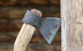 В Холм-Жирковском районе сын напал с топором на родную мать и отчима