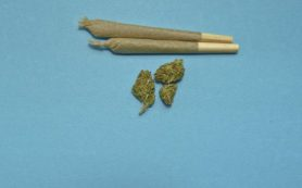 В Десногорске задержан ранее судимый торговец марихуаной