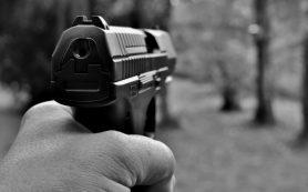 В Ершичах дебошир стрелял в женщину из пневматического пистолета