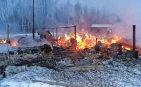 Пожар уничтожил дачу в Темкинском районе