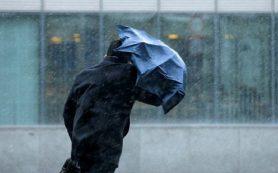 МЧС предупреждает смолян о порывистом ветре