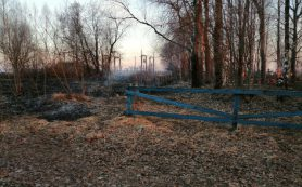 «Крематорий» по-смоленски. Напротив деревни огонь охватил кладбище