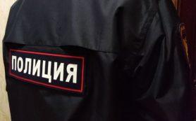 Очевидцев наезда на 15-летнюю девушку ищут в Смоленске