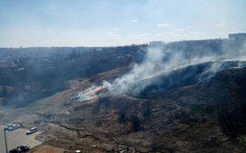 «Задыхаются от дыма»: пал сухой травы губит Смоленщину