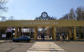 Смоляне выбрали логотип Лопатинского сада