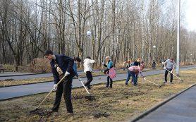 Андрей Борисов призывает трудовые коллективы и жителей Смоленска принять участие в общегородском субботнике