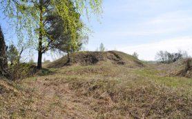 Смоленские следователи проверяют информацию об уничтожении археологического памятника