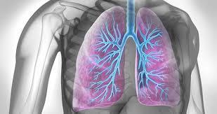 Болезнь дыхательных путей