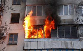 Шашлычная загорелась на М-1 в районе Сафонова
