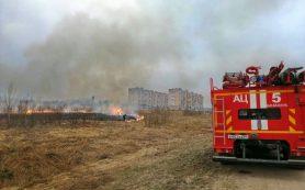 За палы травы на Смоленщине привлекли к ответственности 141 человека
