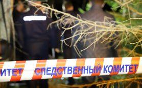 Причастные к убийству сотрудника ГАИ в Республике Беларусь могут находиться в Смоленской области?