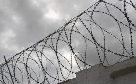В Смоленской области насильника и убийцу 7-летней дочери приговорили к 23 годам лишения свободы