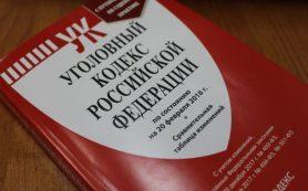 Жительницу Гагаринского района будут судить за драку с сотрудницей полиции