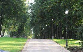 Три велостоянки собираются построить у парка «Соловьиная роща» в Смоленске