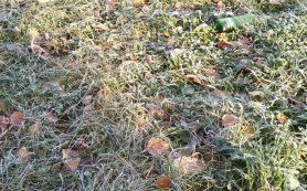На Смоленщине ожидаются первые заморозки