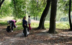 В Смоленске чиновники взялись за мешки и грабли