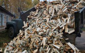 Многодетную смоленскую семью обеспечили дровами к зиме