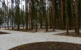 Парку в Дорогобуже собираются присвоить имя Юрия Гагарина