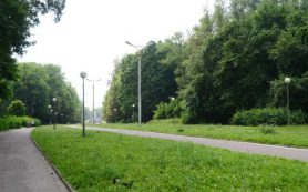 Жители Смоленска жалуются на неработающие фонари в Реадовке