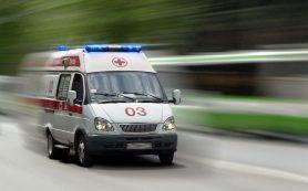 Соцсети: в Смоленской области ребенку в школе сломали позвоночник