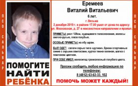 После исчезновения 6-летнего мальчика СК завёл уголовное дело по факту убийства
