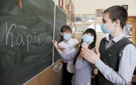 Более 20 классов из восьми школ Смоленска ушли на карантин
