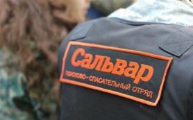 Поиски пропавшего жителя Верхнеднепровского начались в Смоленской области