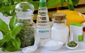 Сахарозаменитель стевия – в 300 раз слаще сахара и не содержит калорий