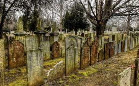 Неизвестные сняли брусчатку на кладбище в Рославле