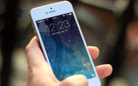 Мобильное приложение МФЦ начало работать в Смоленской области