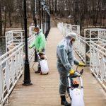 Дезинфекцию проводят в парках Смоленска