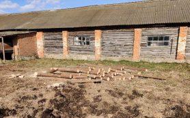 Намерение построить загон для овец может привести жителя Смоленской области в тюрьму