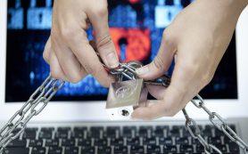 В Смоленске заблокировали 16 сайтов, торговавших правами и «санкционкой»