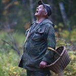 В Смоленской области нашли пропавшего грибника