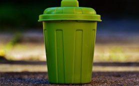 Новый полигон по захоронению отходов может появиться на Смоленщине