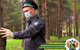 В Смоленской области Россельхознадзор ввёл карантин в двух районах