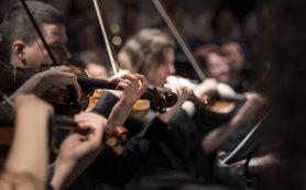 В Смоленске состоится концерт Симфонического оркестра Мариинского театра под управлением Гергиева