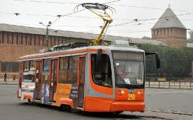 Вырванные саженцы собираются восстановить на улице Николаева в Смоленске
