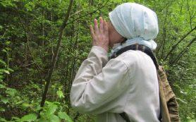 В Смоленской области нашли еще двух грибников